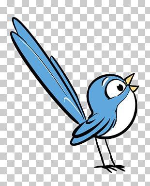 Beak Cartoon Feather White PNG