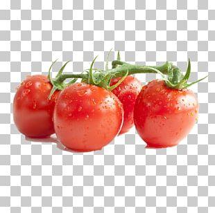 Lycopene Cherry Tomato Tomato Paste Tomato Extract Tomato Sauce PNG
