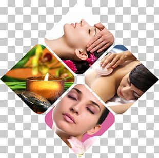 Beauty Parlour Day Spa Cosmetics Hairdresser PNG