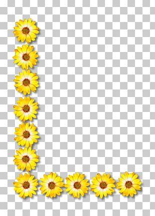 Common Sunflower Letter Alphabet PNG