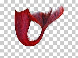Editing PicsArt Photo Studio Mermaid PNG
