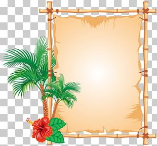 Bamboo Frames PNG