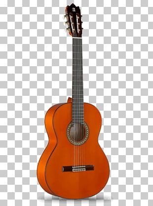 Maton Acoustic Guitar String Instruments Classical Guitar PNG