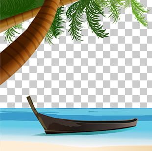 Beach Coconut Tree PNG