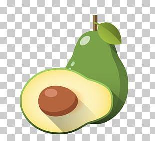 Cartoon Avocado Illustration PNG