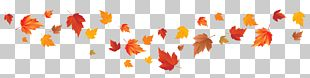 Autumn Leaf Color Autumn Leaf Color Red Maple Maple Leaf PNG