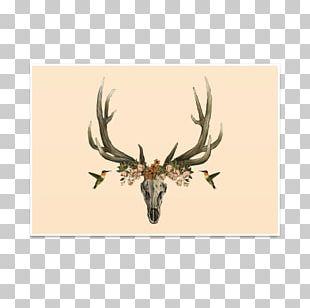 Elk Culture La Calavera Catrina Lifestyle Symbol PNG