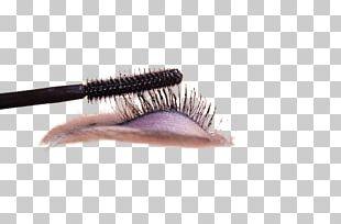 Eyelash Make-up Cosmetics PNG