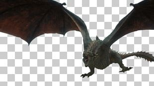 Daenerys Targaryen Drogon A Game Of Thrones The Dragon And The Wolf Game Of Thrones PNG