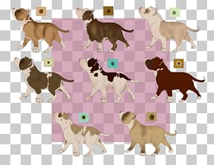 Dog Breed Puppy Cat Fauna PNG