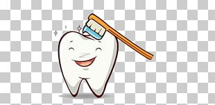 Tooth Brushing Toothbrush Human Tooth Dentistry PNG