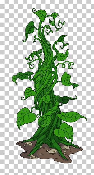 Woody Plant Tree Plant Stem PNG