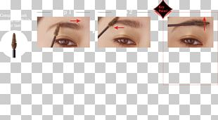 Eyelash Extensions Eye Shadow Eye Liner Eyebrow PNG