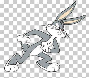 Bugs Bunny Daffy Duck Lola Bunny Porky Pig Babs Bunny PNG