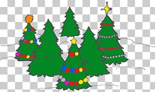 Christmas Tree Spruce Christmas Ornament Fir PNG