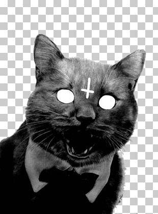 Cross Of Saint Peter Kitten Christian Cross Sphynx Cat Satan PNG