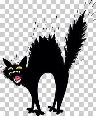 Scary Black Cat PNG