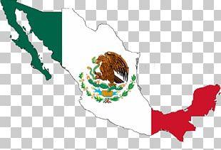 Flag Of Mexico Mexican Cuisine Cinco De Mayo PNG