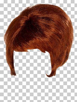 Wig Beehive PNG