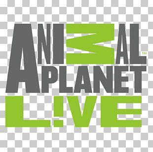 Animal Planet Live Logo Livestream Television PNG