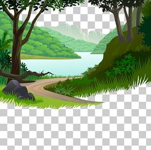 Nature Cartoon Illustration PNG