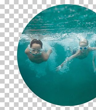 Swimming Pool Leisure Water Vacation PNG