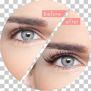 Eyelash Extensions Artificial Hair Integrations Beauty Parlour PNG