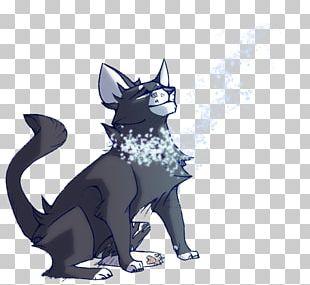 Whiskers Kitten Black Cat Canidae PNG