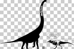 Sauroposeidon Dinosaur Size Tyrannosaurus Aptian Brachiosaurus PNG