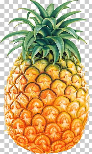 Pineapple Fruit PNG