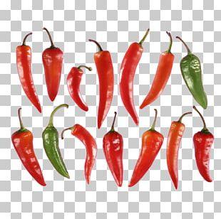 Habanero Piquillo Pepper Serrano Pepper Chile De árbol Jalapeño PNG
