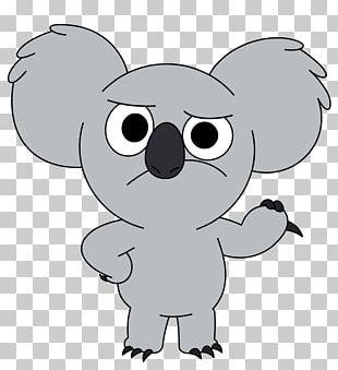 Koala Polar Bear Name Mammal PNG