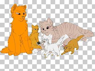 Cat Felidae Kitten Mammal Warriors PNG