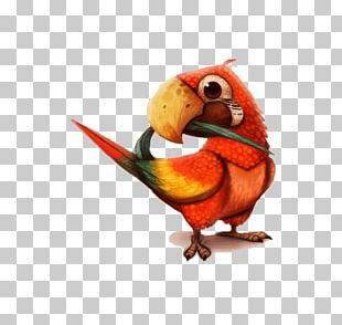 Parrot Drawing Painting PNG