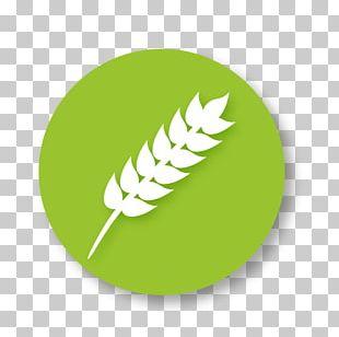 Gluten-free Diet Food Symbol PNG