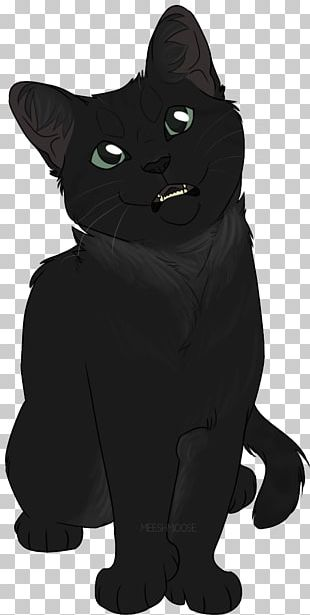 Black Cat Whiskers Domestic Short-haired Cat Snout PNG
