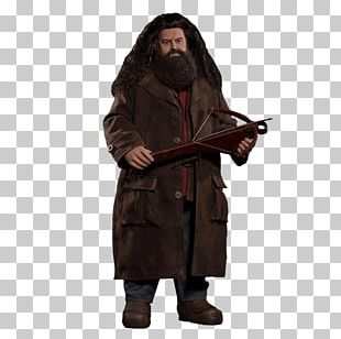 Rubeus Hagrid Harry Potter And The Philosopher's Stone Hermione Granger Ron Weasley PNG