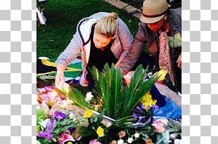 Floral Design Garden Flowering Plant PNG