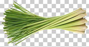 Allium Fistulosum Energy Drink Leek Herb Lemongrass PNG