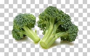 Broccoli Organic Food Vegetable Frozen Food PNG