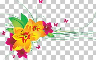 Butterfly Flower Drawing PNG
