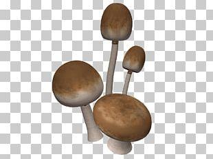 Brown Mushrooms PNG