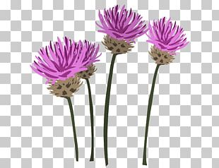 Flowerpot Plant Stem Cut Flowers Artificial Flower PNG