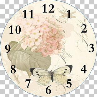 Clock Face Floral Clock Floor & Grandfather Clocks PNG