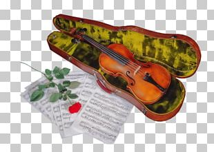 Violin Musical Instruments Cello Viola PNG