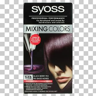 Hair Coloring Color Mixing Hairdresser Human Hair Color PNG