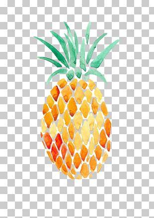 Pineapple Watercolor Painting Art Transparent Watercolor PNG