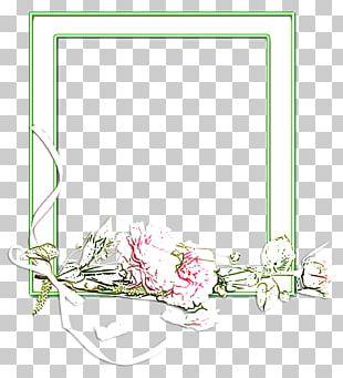 Floral Design Frames Leaf Product PNG