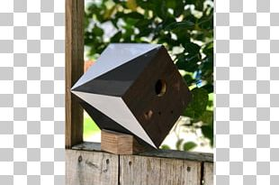 Bird Nest Nest Box Birdhouse Skateboards PNG