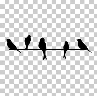 Bird Wall Decal Sticker PNG